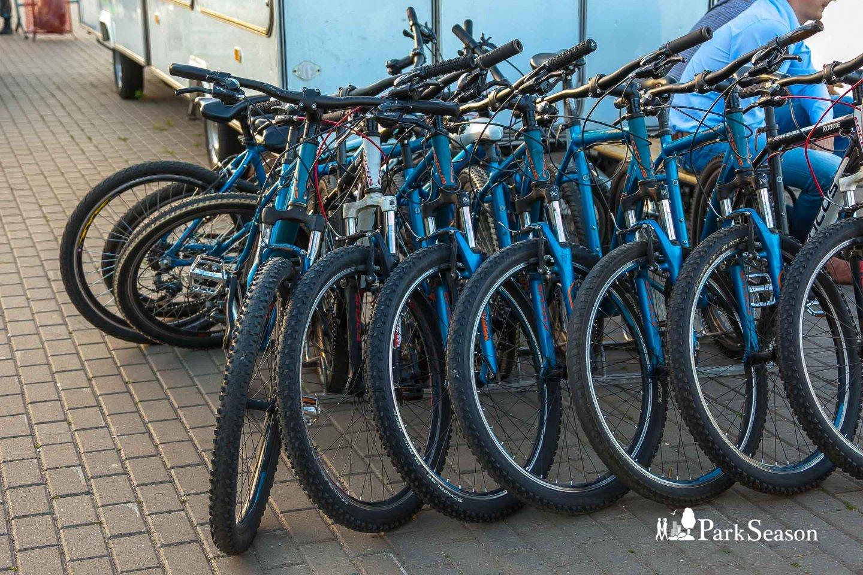 Прокат велосипедов — ParkSeason
