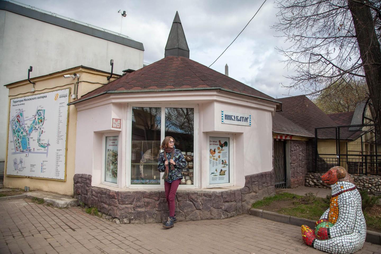 Инкубатор, Московский зоопарк, Москва — ParkSeason