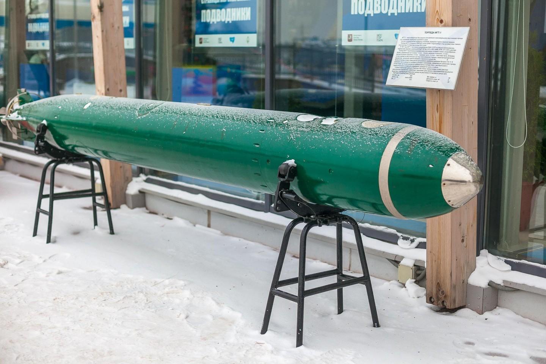 Торпеда МГТ-1, Парк «Северное Тушино», Москва — ParkSeason