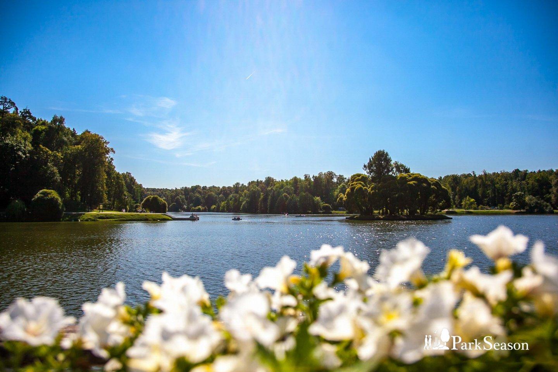Верхний Царицынский пруд, Музей-заповедник «Царицыно», Москва — ParkSeason
