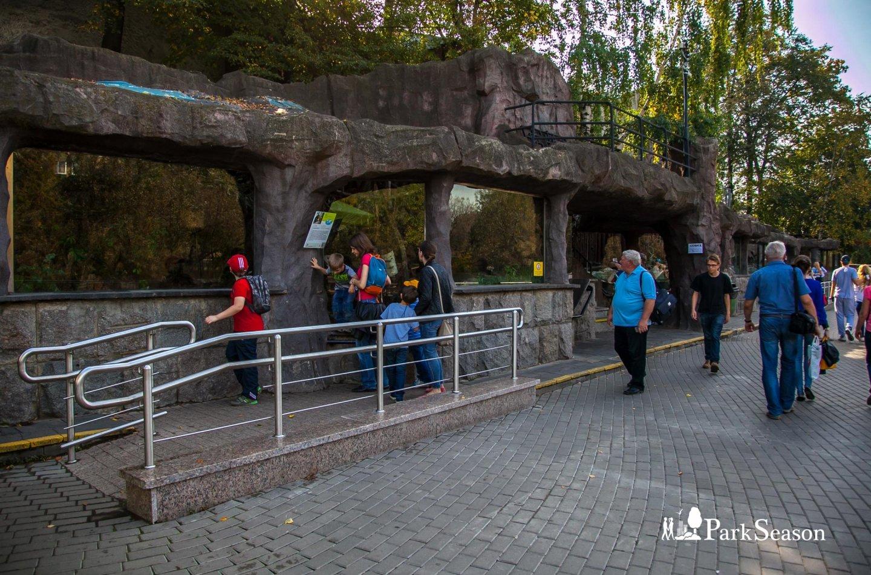 Харза, Московский зоопарк, Москва — ParkSeason