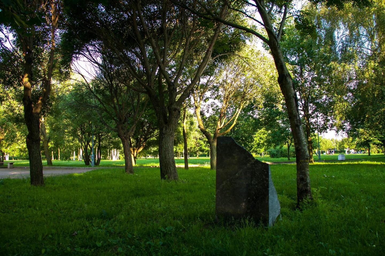Дерево, посаженное Рамзаном Кадыровым — ParkSeason