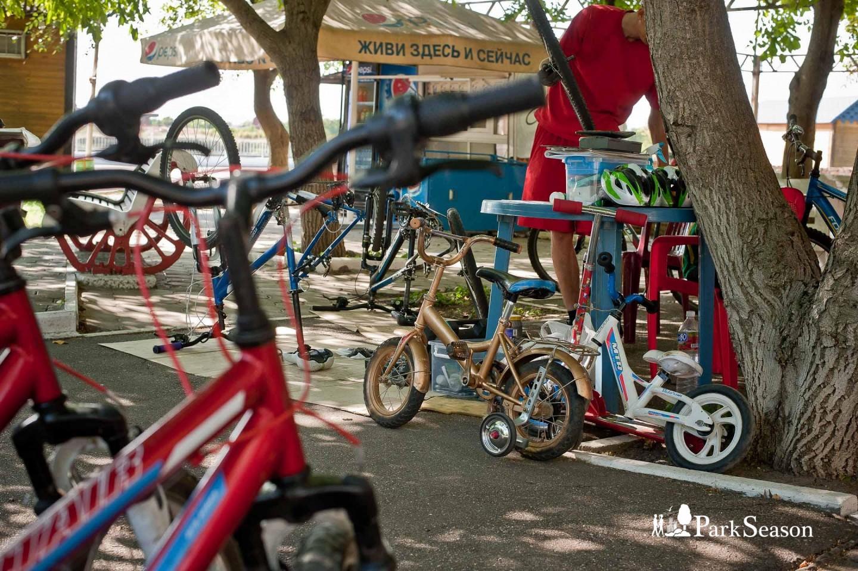Велопрокат — ParkSeason