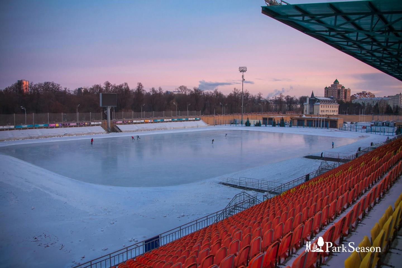Каток стадиона «Трудовые резервы» — ParkSeason