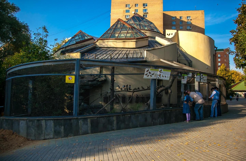 Утки, Московский зоопарк, Москва — ParkSeason