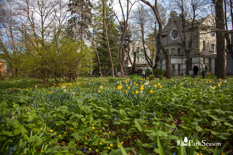 Теневой сад, Аптекарский огород, Москва — ParkSeason