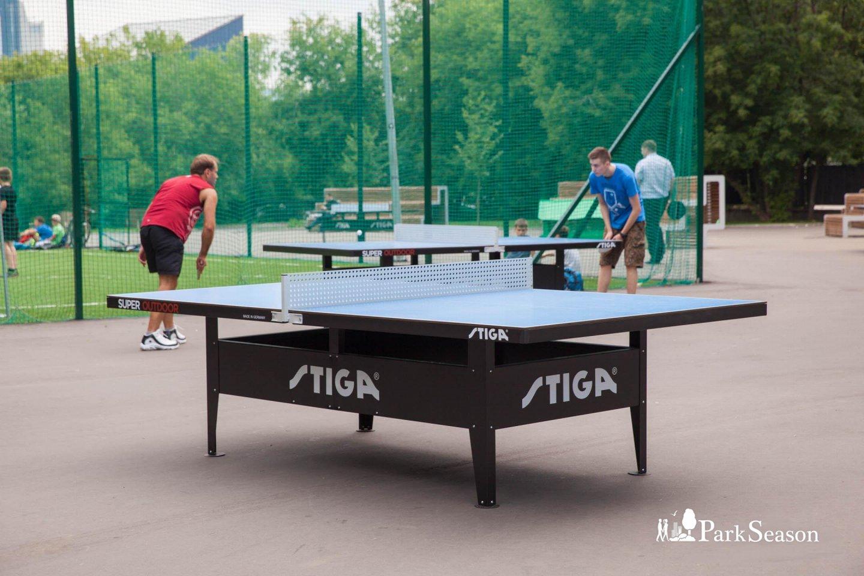 Настольный теннис, Парк «Красная Пресня», Москва — ParkSeason