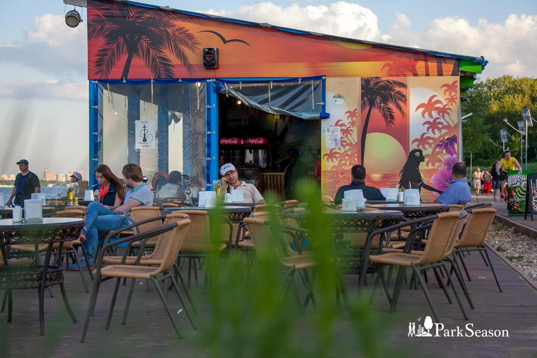Кафе «Папай Бич», Парк «Северное Тушино», Москва — ParkSeason
