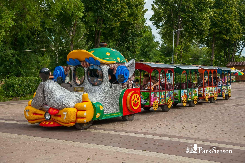 Веселый паровозик — ParkSeason