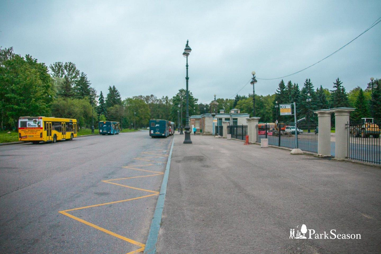 Остановка «Крестовский остров» — ParkSeason