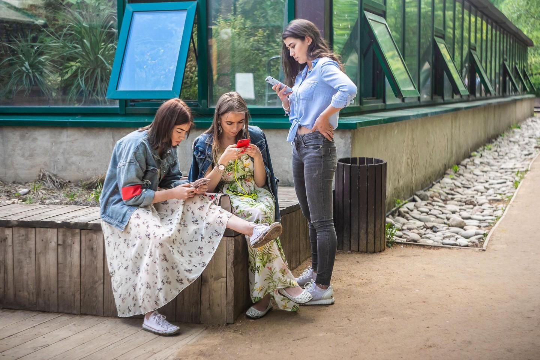 Викторная оранжерея — ParkSeason
