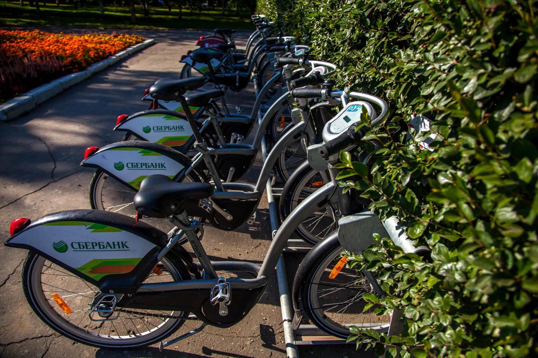 Городской прокат велосипедов, Парк «Новодевичьи пруды», Москва — ParkSeason