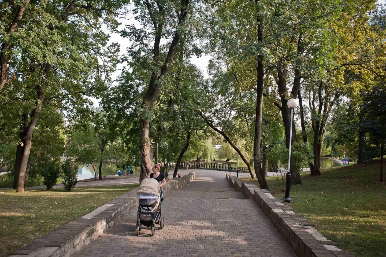 Обзорная площадка на пруд — ParkSeason