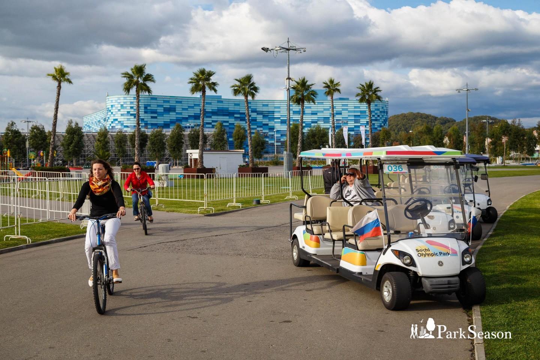 олимпийский парк сочи фото велорикши можно открыть