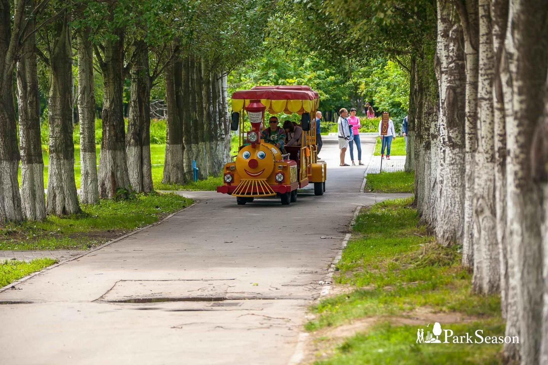 Детский паровозик — ParkSeason