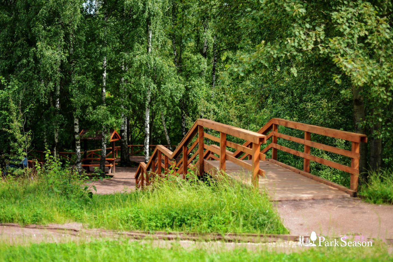 Спуск к реке, Парк 50-летия Октября, Москва — ParkSeason