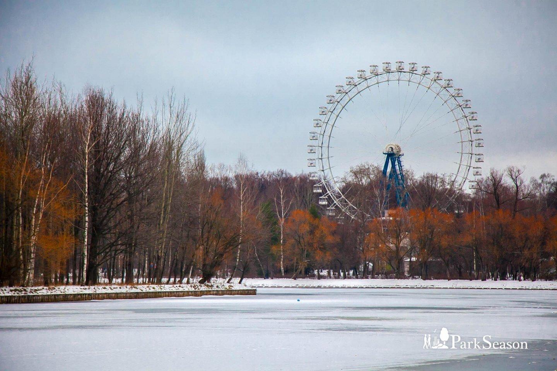 Круглый пруд, Парк «Измайловский», Москва — ParkSeason