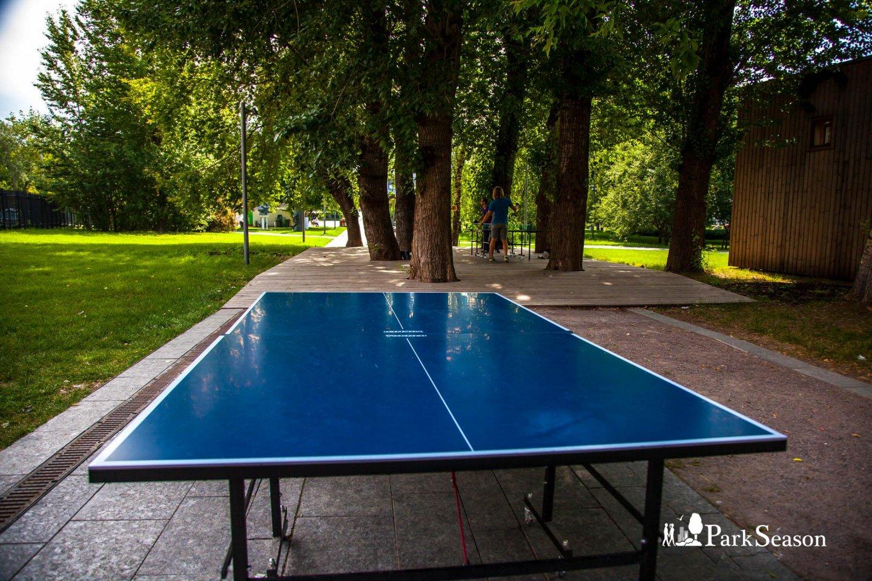 Настольный теннис, «Музеон», Москва — ParkSeason