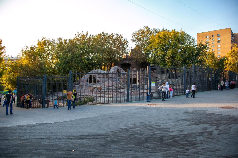 Винторогий козел, Московский зоопарк, Москва — ParkSeason