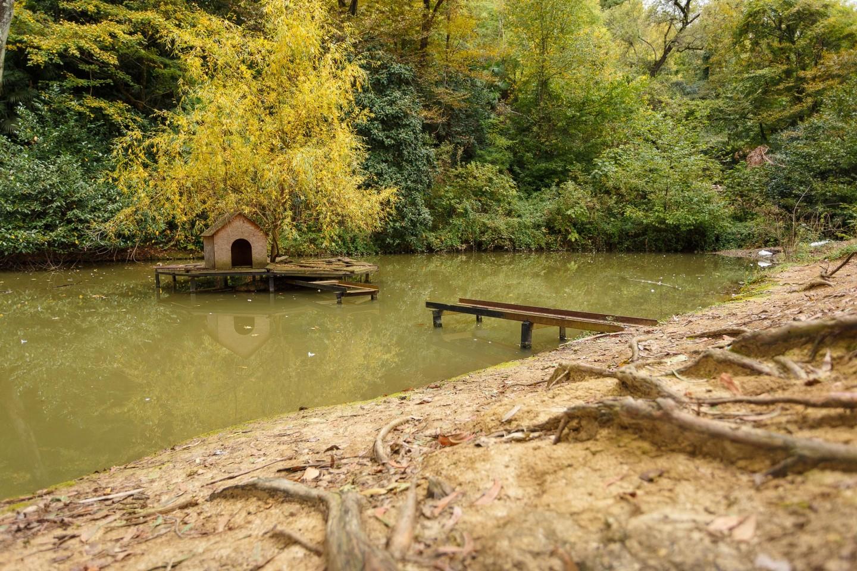Домик лебедя — ParkSeason