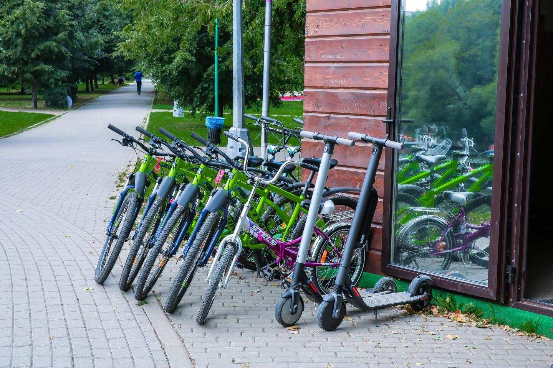 Пункты проката в Воронцовском парке — ParkSeason