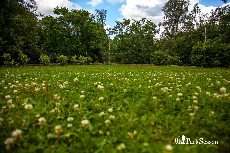 Солнечная поляна, Парк «Сокольники», Москва — ParkSeason