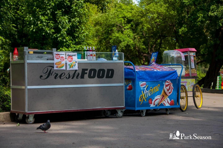 Фургончики с уличной едой — ParkSeason