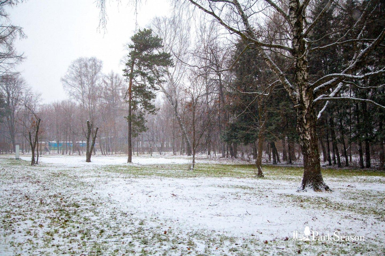 Кинополяна, Парк «Сокольники», Москва — ParkSeason