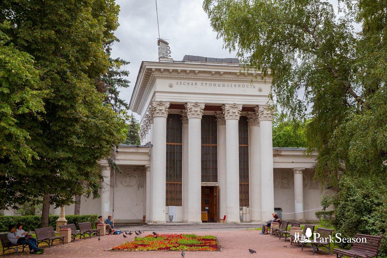 Павильон № 17: «Лесная промышленность» (закрыт на реконструкцию), ВДНХ, Москва — ParkSeason