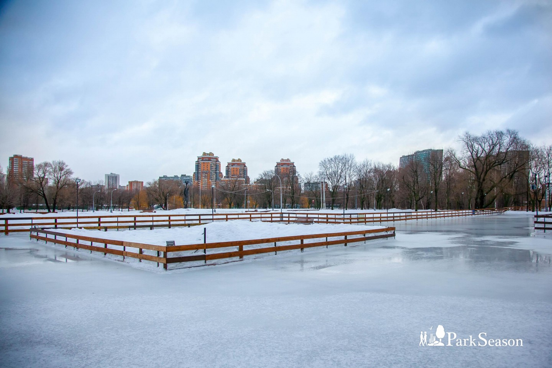 Каток в парке Дружбы, Парк Дружбы, Москва — ParkSeason