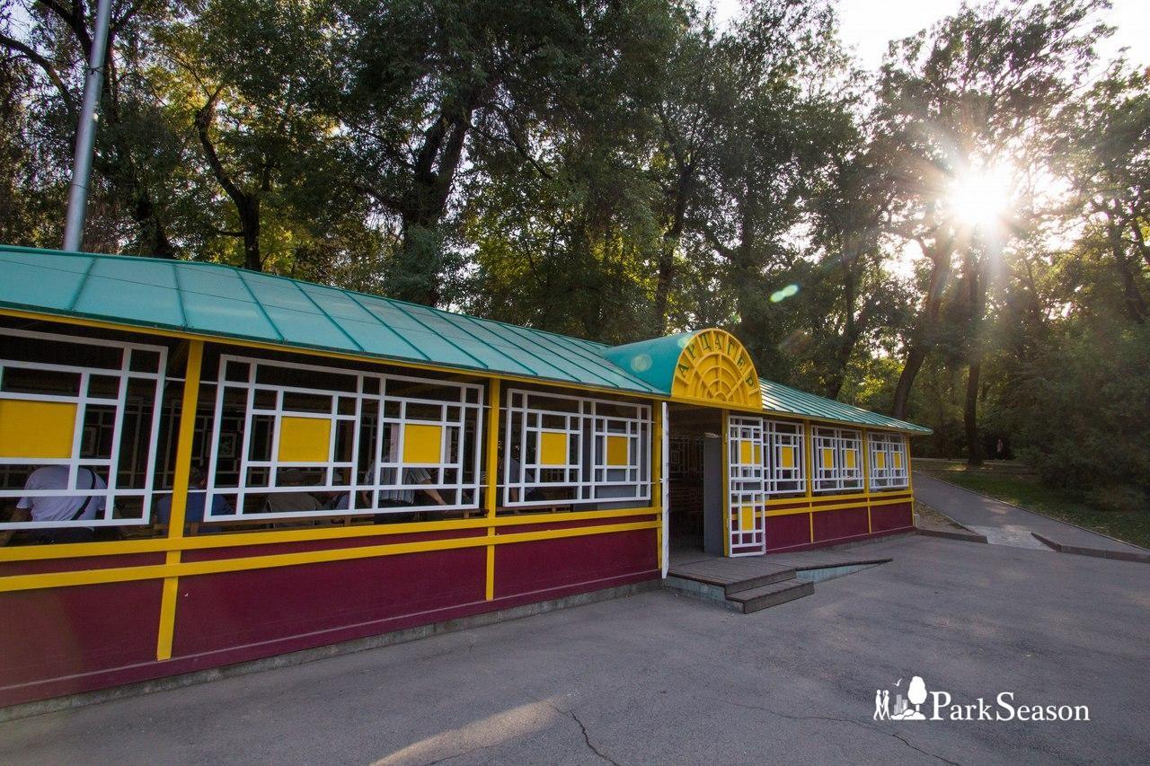 Шахматный клуб «Ардагер» — ParkSeason
