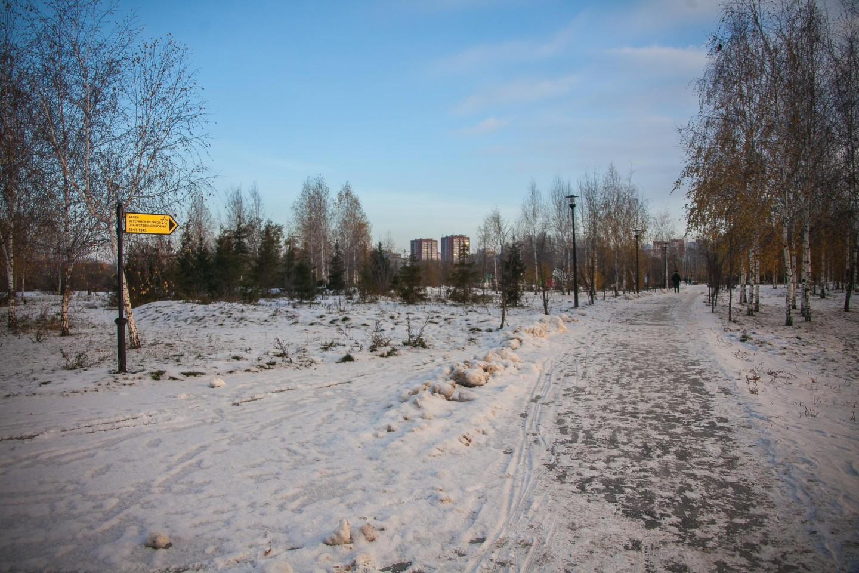 Аллея ветеранов Великой Отечественной Войны — ParkSeason
