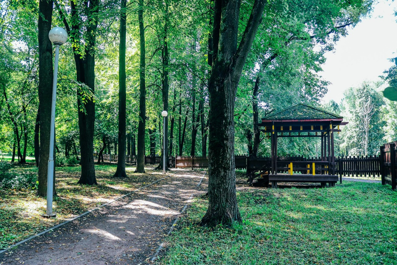 Китайский сад — ParkSeason