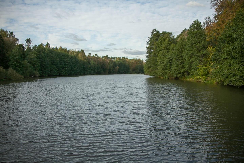 Большой пруд — ParkSeason