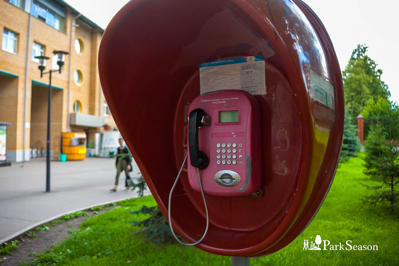 Таксофон — ParkSeason