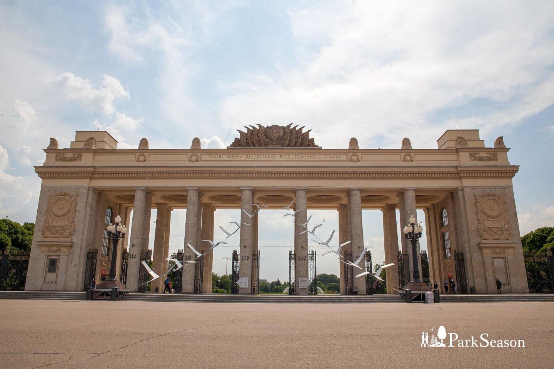 Лекторий в здании Главного входа, Парк Горького, Москва — ParkSeason