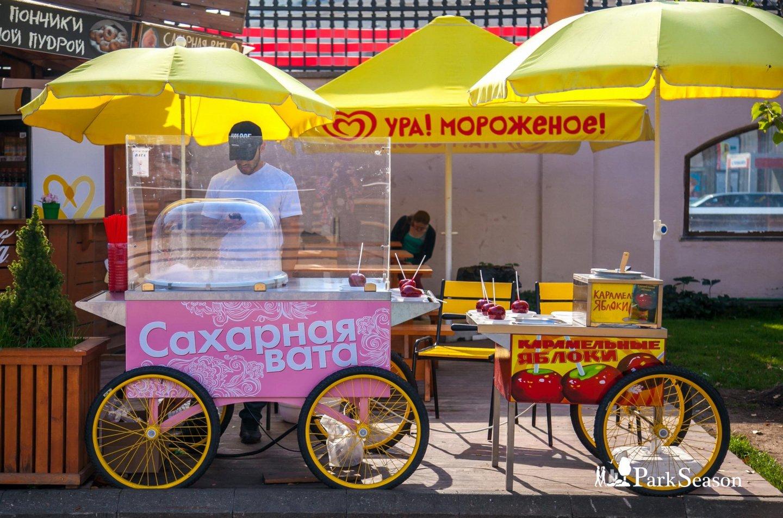 Сладкая сахарная вата, Московский зоопарк, Москва — ParkSeason