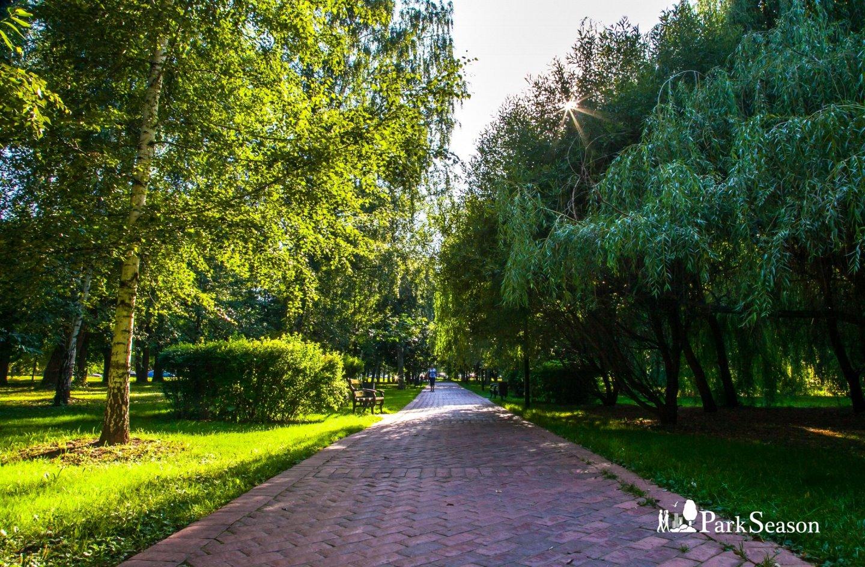 Аллея памяти, Воробьевы горы, Москва — ParkSeason
