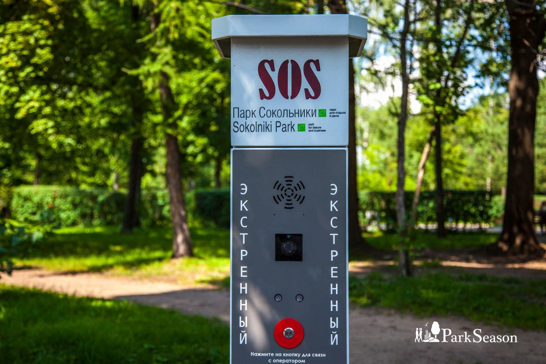 Тревожная кнопка, Парк «Сокольники», Москва — ParkSeason
