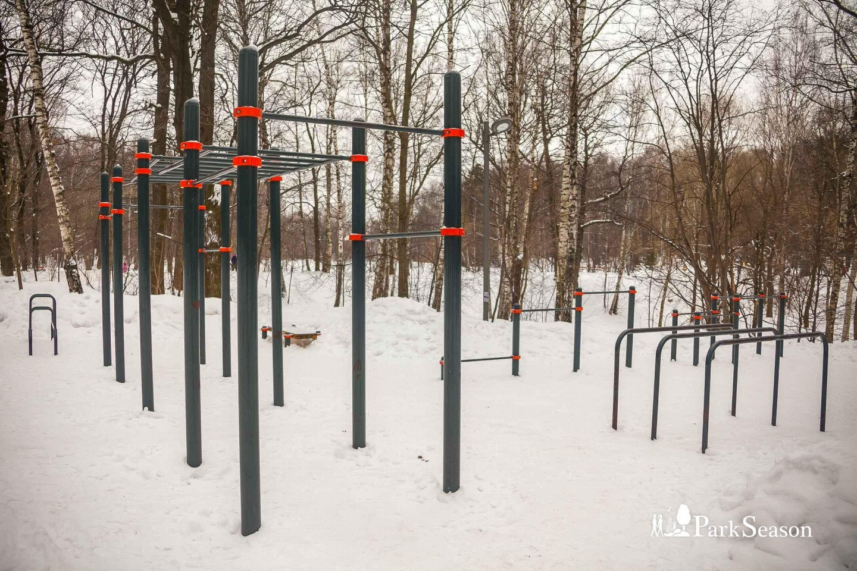 Площадка WorkOut, Лианозовский парк, Москва — ParkSeason