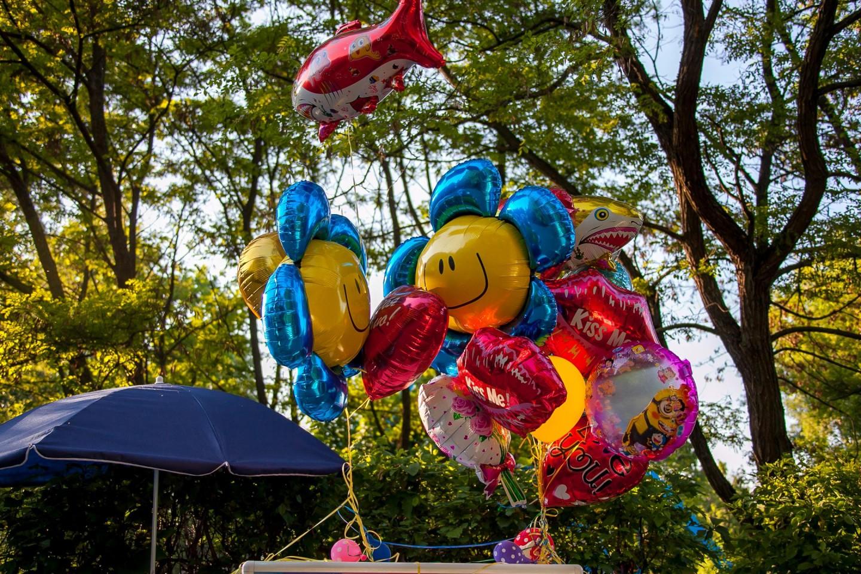 Воздушные шары, Парк «Северное Тушино», Москва — ParkSeason