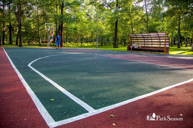 Баскетбольная площадка, Лианозовский парк, Москва — ParkSeason