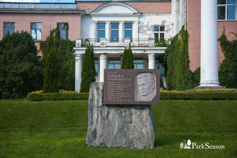 Памятник Н.В. Цицину — ParkSeason