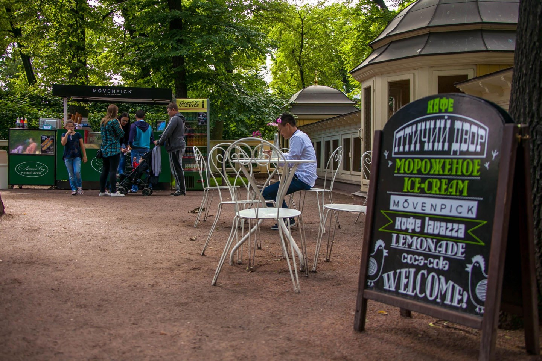 Кафе «Птичий двор» — ParkSeason
