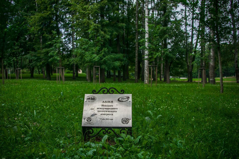 Аллея Невского международного экологического конгресса — ParkSeason