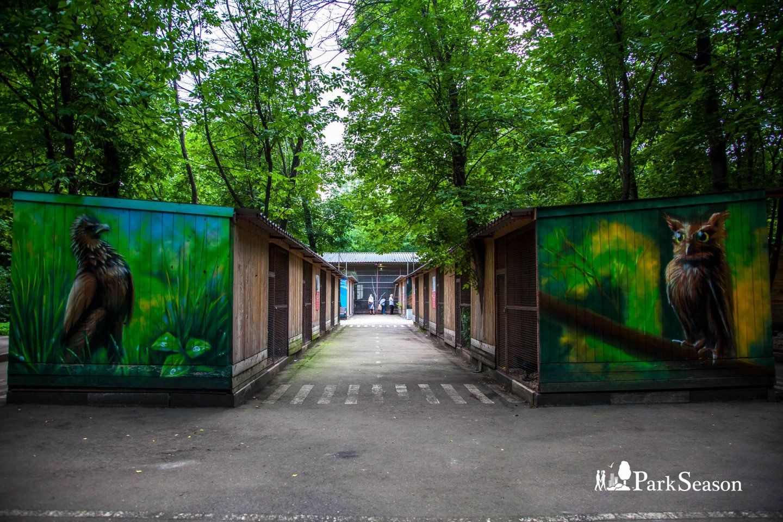 Орнитарий, Парк «Сокольники», Москва — ParkSeason