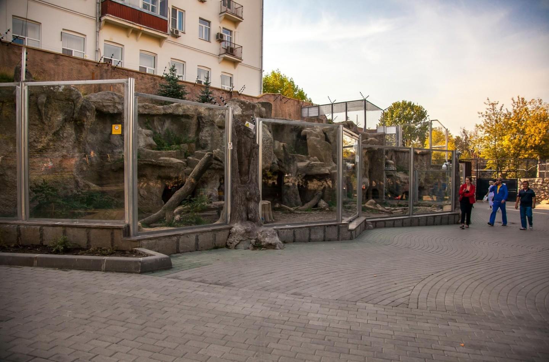 Росомаха, Московский зоопарк, Москва — ParkSeason