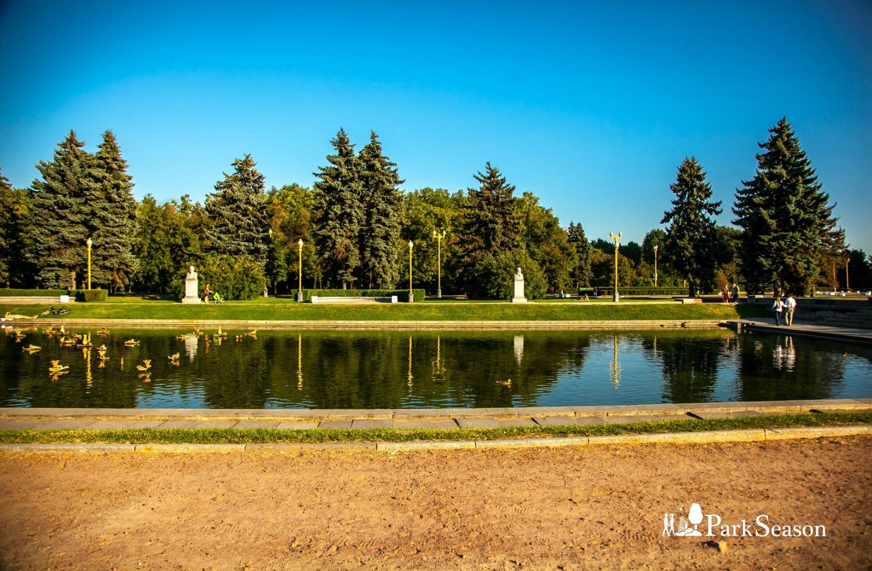 Пруд, Озелененная территория МГУ, Москва — ParkSeason