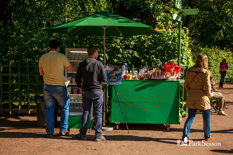 Киоск со сладостями и ягодами — ParkSeason