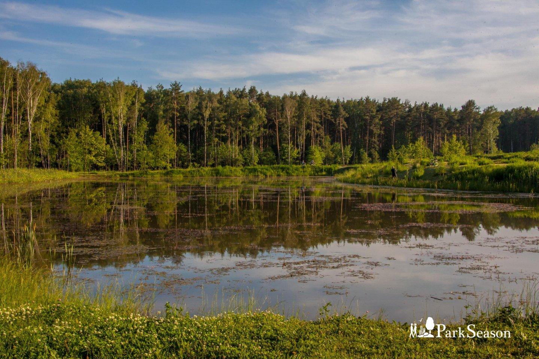 Центральная поляна, Парк «Мещерский», Москва — ParkSeason